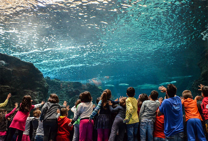 Cretaquarium-in-Heraklion-Crete-Greece